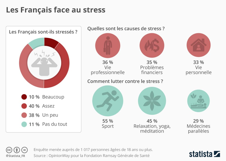 Comment Gerer Son Stress Et Ses Emotions - Stress Sans Raison
